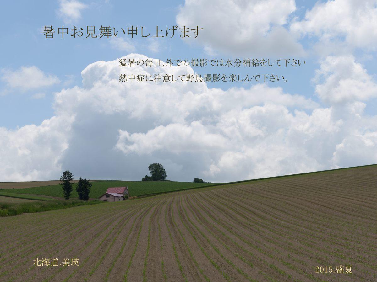 DSC_0384b_edited-1.jpg