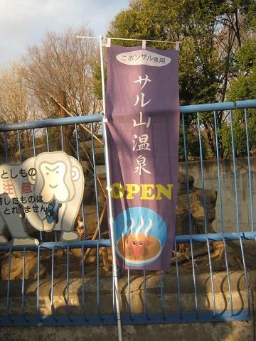 chikozan150111-111.jpg