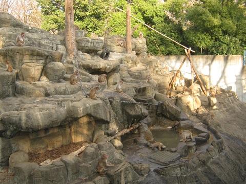 chikozan150111-113.jpg