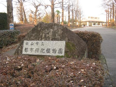 chikozan150111-124.jpg