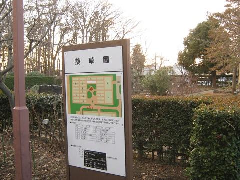 chikozan150111-130.jpg