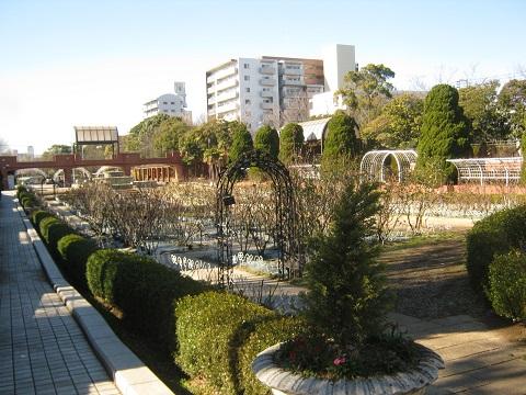 flowergarden150112-103.jpg