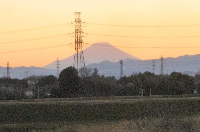 kawazima150201-103.jpg