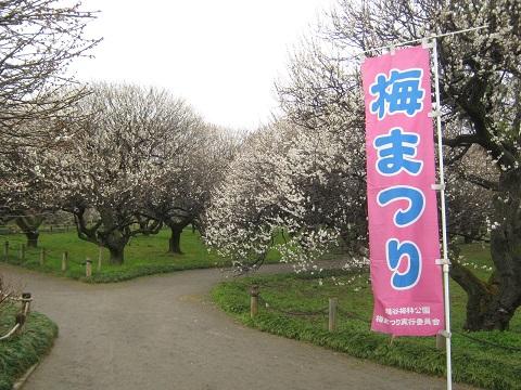 koshigaya150307-102.jpg