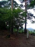 P8140088c.jpg