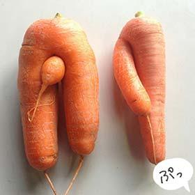 可愛いにんじn02