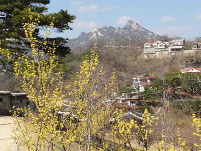 2013年4月7日 詩人の丘からの風景―ケナリと