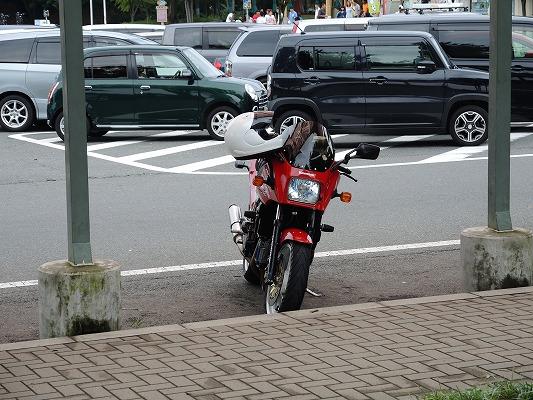 DSCN3047.jpg