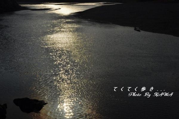 7四万十川15.01.25