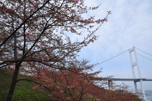 3糸山15.02.24