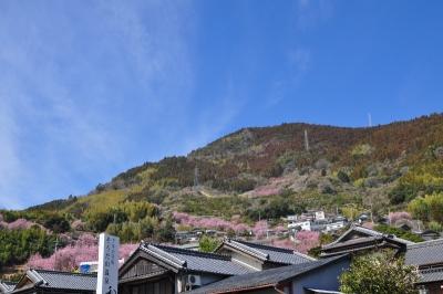 3桑田山15.03.05