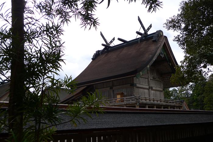 出雲の神社巡り  出雲大社  25