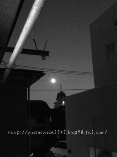 20150731003.jpg