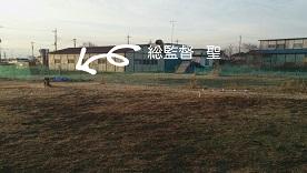201550.jpg