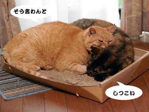15_07_09_2.jpg