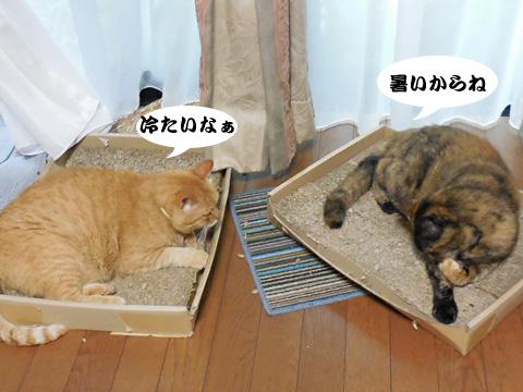 15_07_09_3.jpg