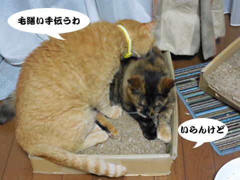 15_07_09_5.jpg