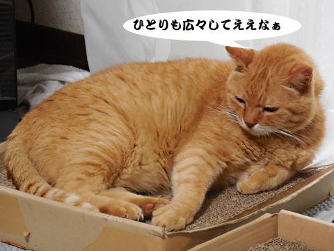 15_07_19_2.jpg