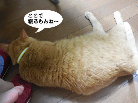 15_07_23_2.jpg