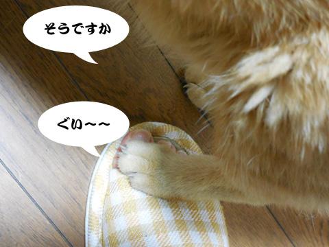 15_08_06_3.jpg