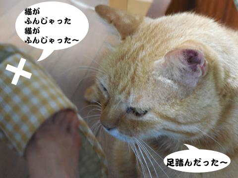 15_08_06_4.jpg