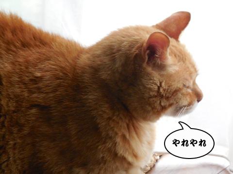 15_08_15_2.jpg