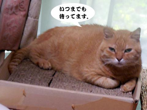 15_08_19_5.jpg