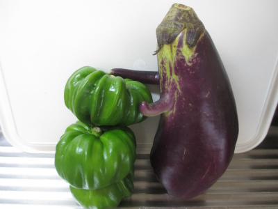 茄子と神楽南蛮