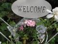 一条工務店セゾン系棲家のアフターケアの合間に綴るブログ