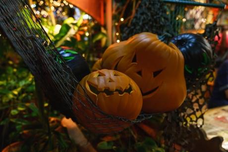 2018_Halloween_1.jpg