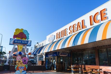 blueseal_1.jpg