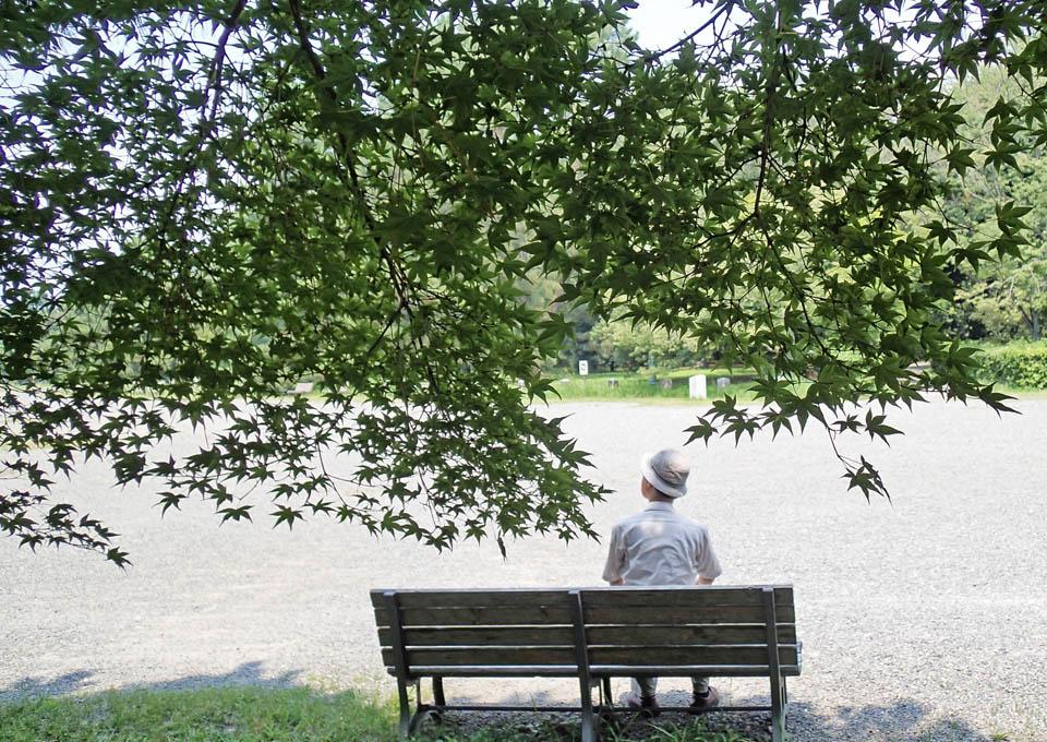 bench_399.jpg