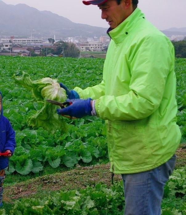 thumbnail_農業体験4