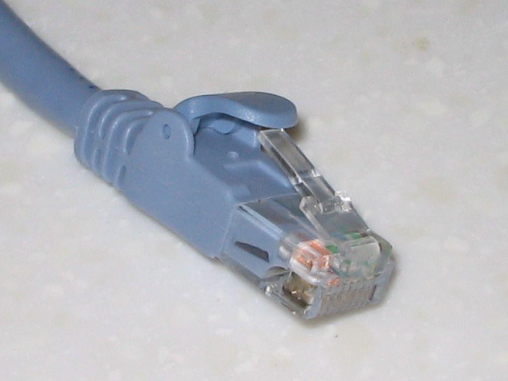 ELECOM CAT6A対応 LD-GPA/BU03 コネクタ 爪折れカバー付