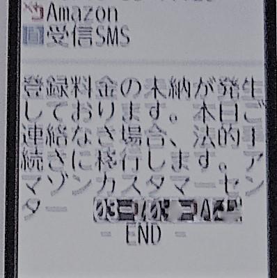 P10106091.jpg
