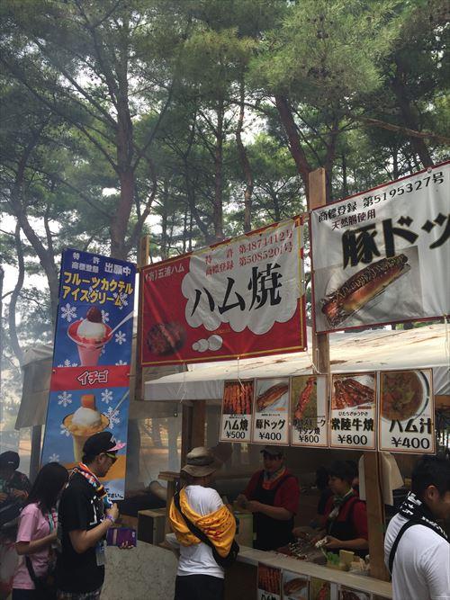 ゆうブログケロブログロックインジャパン2015 (2)
