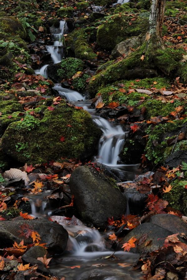018A6741 小さな滝