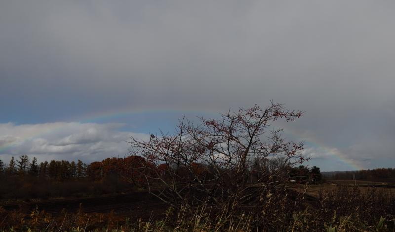 018A7610 虹