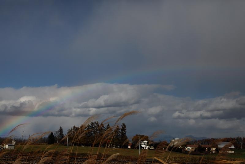 018A7616 虹