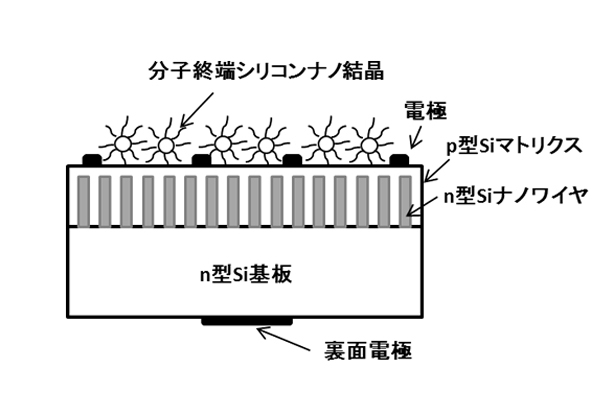 NIMS_Si-nano_solarcell_image.jpg