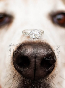 newmarket-engagement-photographer-4.jpg