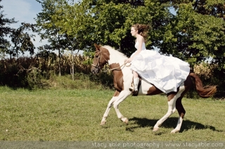 trash-the-dress-horse.jpg