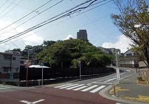 追浜東町商店街通_マンション群03
