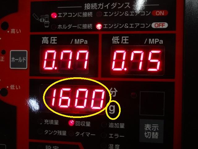 DSC09328.jpg