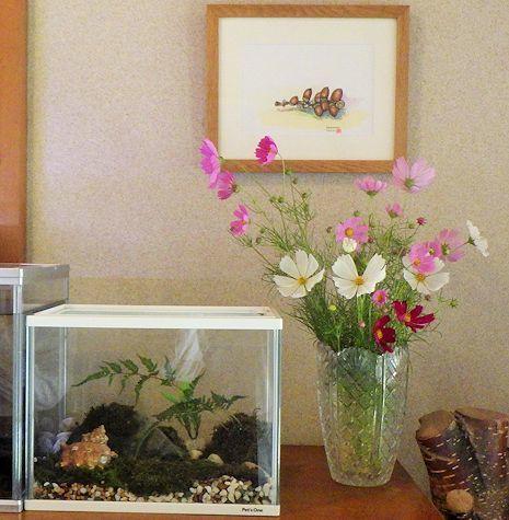 コスモスの花飾り