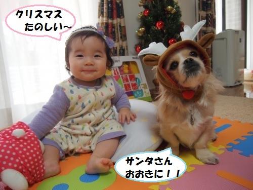 008_convert_20141227215429.jpg