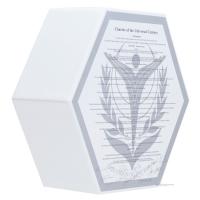 「ラプラスの箱」石碑風収納ボックス (1)