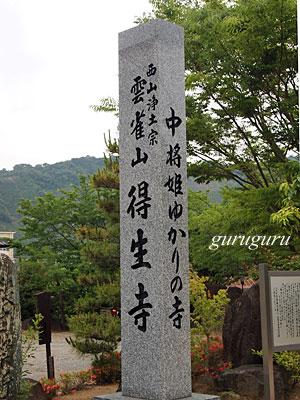 13tokusyou00.jpg