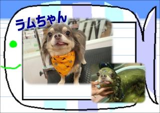ラムちゃん102000