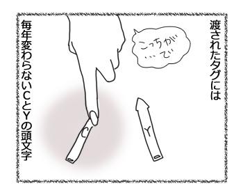 羊の国のラブラドール絵日記シニア!!「CとY」3